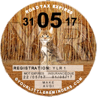 Camo Kitten Car Vehicle Road Tax Disc Reminder PYLR150